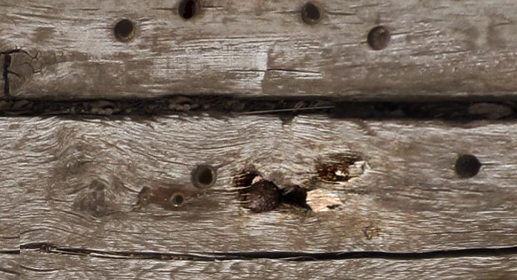 Câu chuyện mảnh gỗ đóng đinh